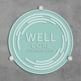 WELL CORE Plaque-Clear Sand Blasted Glass